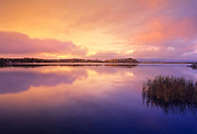 Reflection on White Lake at dawn, Whiteshell Provincial Park, Manitoba, Canada