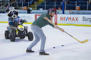 KELOWNA, CANADA - JANUARY 30:  Bark N' Fly at the Kelowna Rockets game on January 30, 2018 at Prospera Place in Kelowna, British Columbia, Canada.  (Photo By Cindy Rogers/Nyasa Photography,  *** Local Caption ***