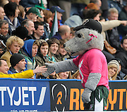 Reading, GREAT BRITAIN,Exiles' Mascot, before the Guinness Premiership game, London Irish vs Harlequins, 19.04.2008 [Mandatory Credit Peter Spurrier/Intersport Images]
