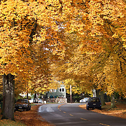 Autumn, Queen Anne hill, Seattle, Washington