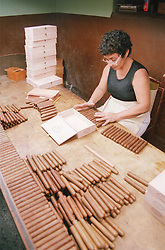 Packing cigars in the Partagas cigar factory; Havana Cuba,