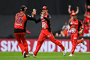 17th February 2019, Marvel Stadium, Melbourne, Australia; Australian Big Bash Cricket League Final, Melbourne Renegades versus Melbourne Stars; Tom Cooper and Mackenzie Harvey of the Melbourne Renegades celebrate a wicket