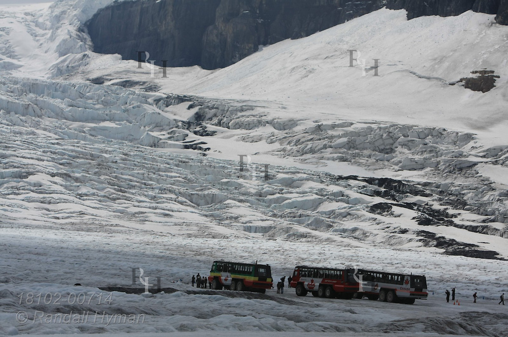 All-terrain buses park on Athabasca Glacier to let tourists get out and walk on the Columbia Icefield in Jasper National Park, Alberta, Canada.