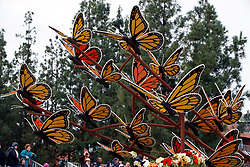 Butterflies on a float on the route of the 2017 Tournament of Roses Parade, Rose Parade, Pasadena, California, United States of America
