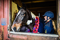 Shelly Worrall fits a poppy garland to Sergeant Major 'Rocky' at the Royal Navy and Royal Marines Riding Stables at Bickleigh Barracks, Plymouth, ahead of the first ever memorial service dedicated to horses killed or injured in conflict.