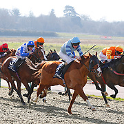 Lingfield 1st March