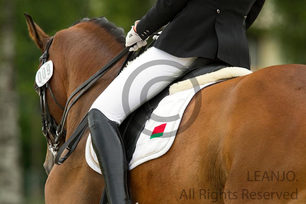 Anastasiya Dudkova - Demagog<br /> FEI European Championships Dressage Juniors and Young Riders 2012<br /> &copy; DigiShots