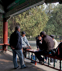 Men playing games, Park surroundimg the Temple of Heaven, Beijing.