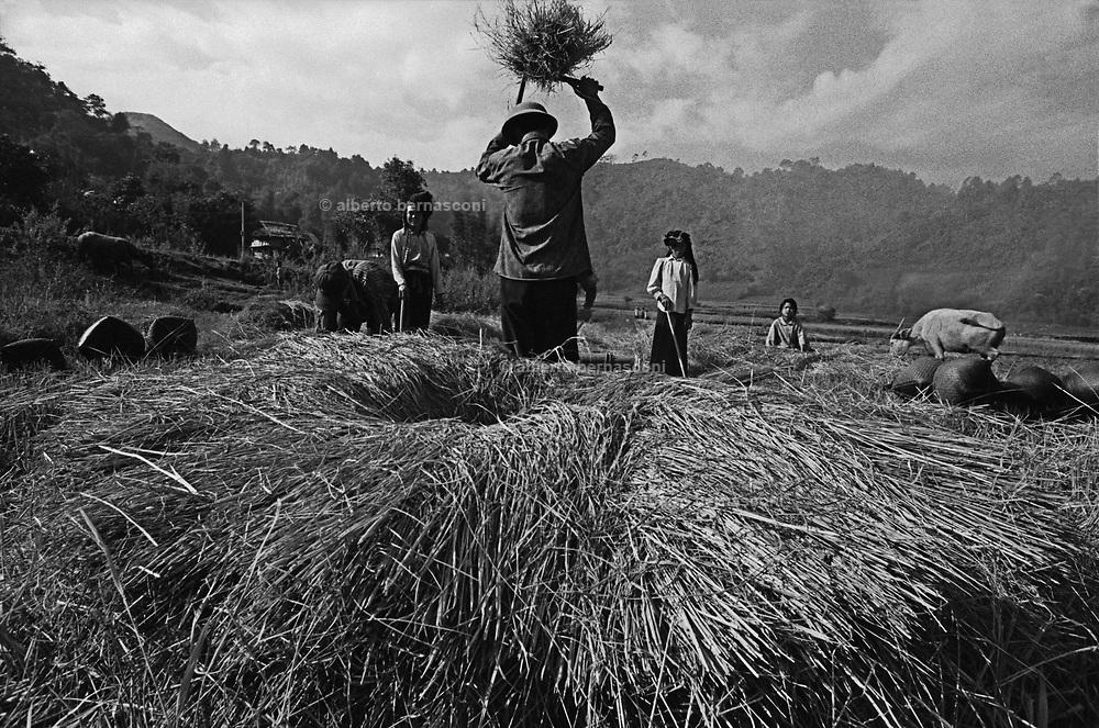 Vietnam, Son La province : Tay minorities