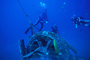 Scuba Diving, Wreck of the Mahi, Waianae, Oahu, Hawaii<br />