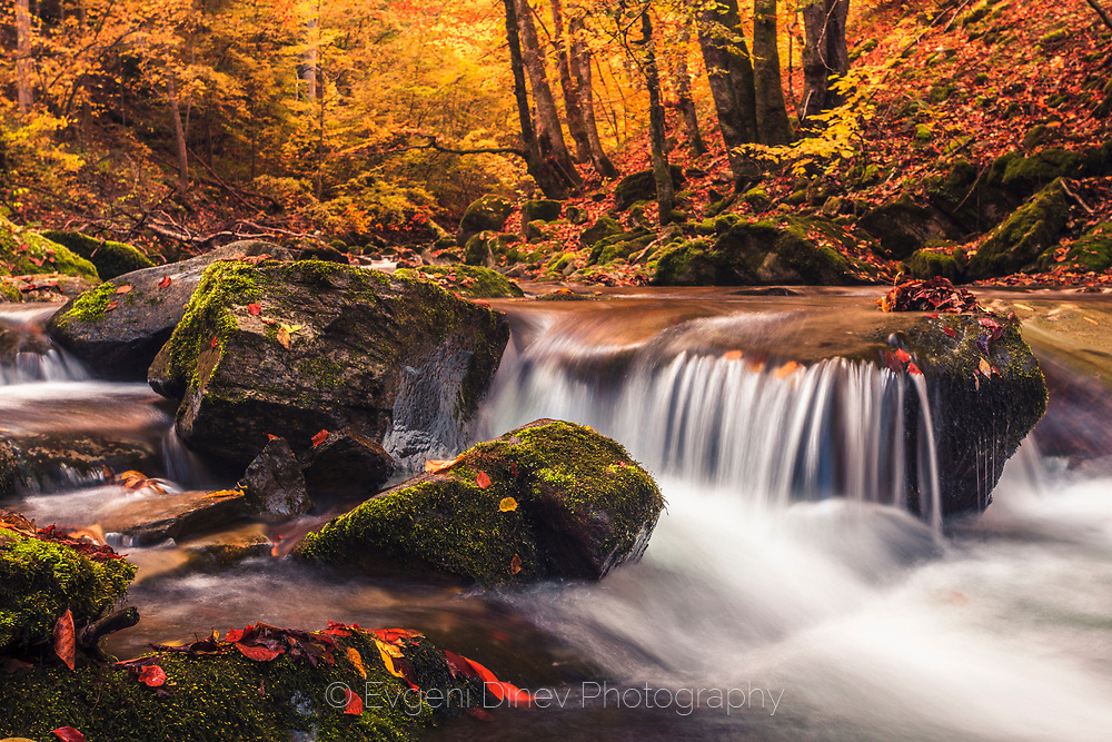 Mountain river at autumn