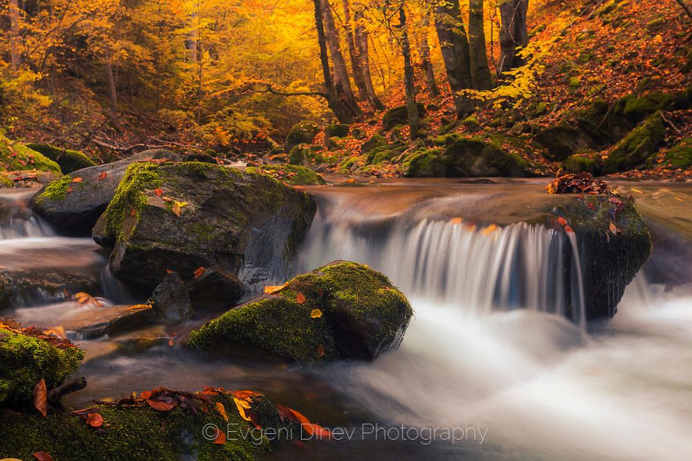 Mountain river at autumn