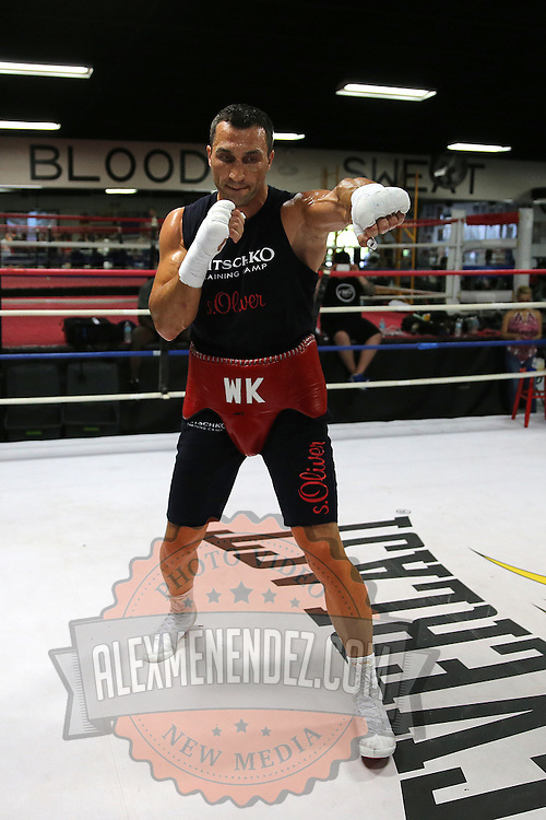 HOLLYWOOD, FL - APRIL 07:  Boxing world champion Wladimir Klitschko works out for the media at the Heavyweight Factory Boxing Gym on April 7, 2015 in Hollywood, Florida. Klitschko is in training for his fight against Bryant Jennings. (Photo by Alex Menendez/Getty Images) *** Local Caption *** Wladimir Klitschko