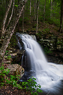 Waterfall photography of a gorgeous falls right off Dry Run Road in Pennsylvania's Worlds End State Park.
