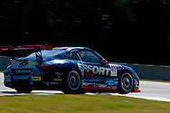 #41 Effort Racing Porsche 911 GT3 Cup: Michael Mills