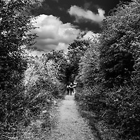 Couple walking along path in countryside
