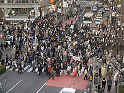 zebra crossing at Shibuya Tokyo Japan