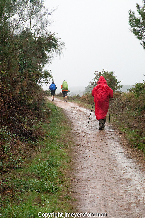 A rainy day on the Camino Frances, lady in a red rain poncho walking the muddy pathway