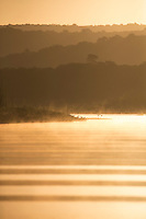 Sunrise at San Cristobal river, San Blas, Mexico<br /> Photography taken from a boat. <br /> Canon EOS-1Dx+EF 100-400 mm f/4.5-5.6L IS II USM<br /> Focal distance 400 mm<br /> 1/6400 s at f/5.6 <br /> ISO 500<br /> 3271x4906 (originally 3456x5184)<br /> No post-processing beyond lens profile and minor dust spotting, global saturation, exposure adjustment, noise reduction, sharpening and cropping.