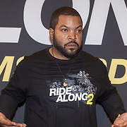 NLD/Amsterdam/20160116 - Photocall en premiere Ride Along 2, Ice Cube