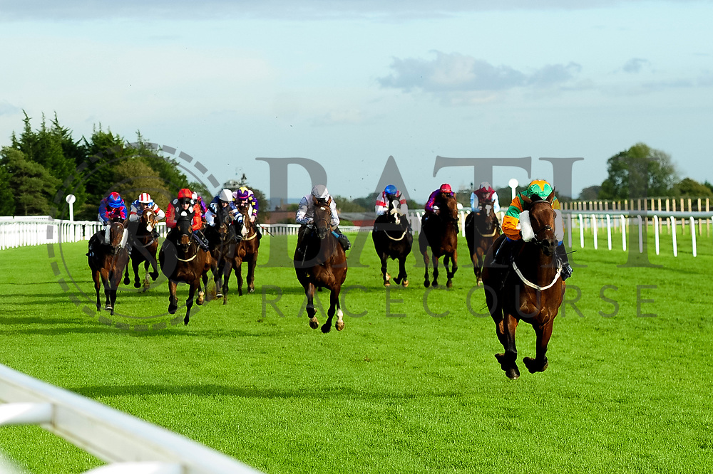 Gamesters Icon ridden by Megan Nicholls and trained by Oliver Greenall - Ryan Hiscott/JMP - 16/10/2019 - PR - Bath Racecourse - Bath, England - Race Meeting at Bath Racecourse
