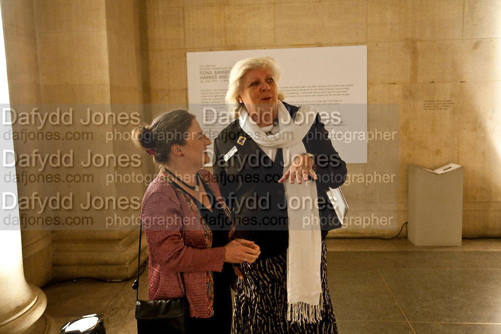 ANNE BECKWITH-SMITH, Archive 40 Reception. 40th Anniversary of the Tate archive. Tate Britain. Millbank. London. 25 October 2010. -DO NOT ARCHIVE-© Copyright Photograph by Dafydd Jones. 248 Clapham Rd. London SW9 0PZ. Tel 0207 820 0771. www.dafjones.com.