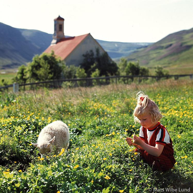 Sveitastemning &iacute; Hvammi &iacute; D&ouml;lum, 1969<br /> <br /> Rural scene at Hvammur, Dalir, 1969