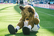 Huddersfield Town mascot sits with his head in his hands after Reading score their second goal during the EFL Sky Bet Championship match between Huddersfield Town and Reading at the John Smiths Stadium, Huddersfield, England on 24 August 2019.
