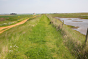 View north of earth sea wall flood protection dyke at Bawdsey, Suffolk, England