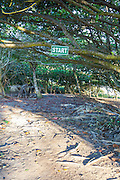 A sign which reads START is posted on the horizontal limb of a tree at Encuentro Beach in the Puerto Plata province of the Dominican Republic.