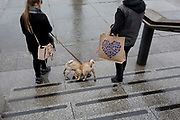 Identical dogs are lead down the steps outside the National Gallery in Trafalgar Square, Westminster, on 9th April 2019, in London, England.