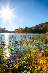 """""""Smith Lake 4"""" - Photograph shot in the morning at Smith Lake in California's Plumas National Forest."""