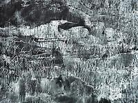 Tacita Dean a British Conceptual artist