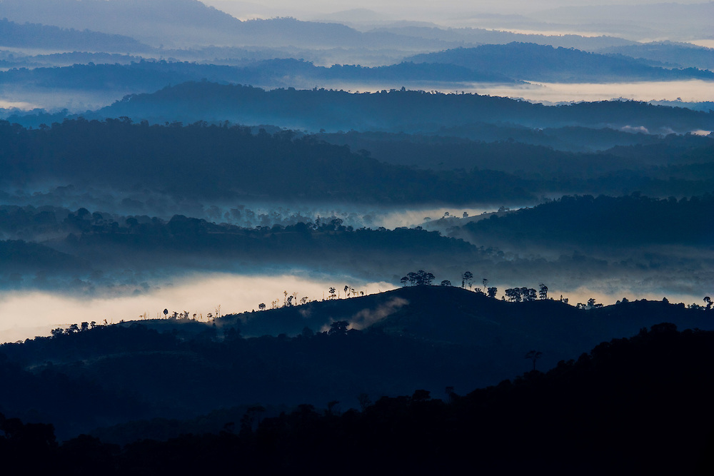 Clouds nestle among forested ridges as the sun rises in Serra Bonita, Bahia, Brazil