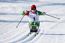 SHYTS Valiantsina, BLR, Middle Distance Cross Country, 2015 IPC Nordic and Biathlon World Cup Finals, Surnadal, Norway