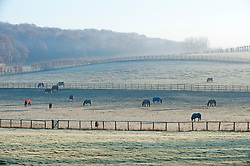 ©Licensed to London News Pictures 04/12/2019.<br /> Swanley,UK. Horses grazing in frozen misty fields in Swanley, Kent. The Met office has issued a cold weather warning as air from the Arctic will see temperatures in the UK drop this week. Photo credit: Grant Falvey/LNP