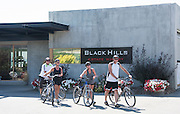 Bicyclists touring Black Hills Estate Winery, Okanagan, British Collumbia, Canada