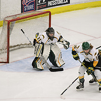 3rd year goalie Jane Kish (31) of the Regina Cougars in action during the Women's Hockey home game on January 20 at Co-operators arena. Credit: Arthur Ward/Arthur Images