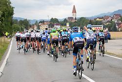 09.07.2019, Frohnleiten, AUT, Ö-Tour, Österreich Radrundfahrt, 3. Etappe, von Kirchschlag nach Frohnleiten (176,2 km), im Bild Peloton // Peloton during 3rd stage from Kirchschlag to Frohnleiten (176,2 km) of the 2019 Tour of Austria. Frohnleiten, Austria on 2019/07/09. EXPA Pictures © 2019, PhotoCredit: EXPA/ Johann Groder