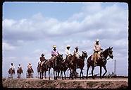 04: PANTANAL COWBOYS ON TRAIL