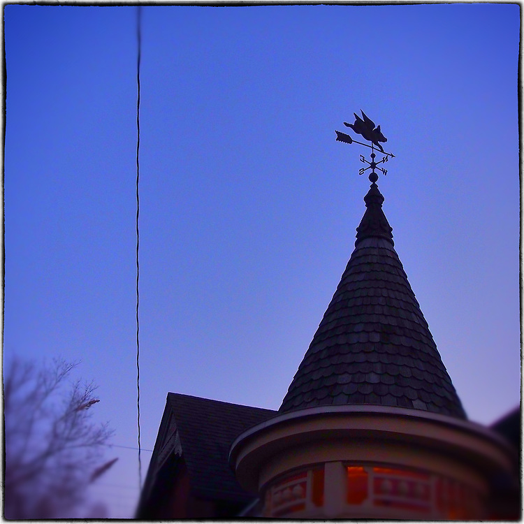 Americana.<br /> <br /> Pigs fly wind vane, Dayton, Ohio.