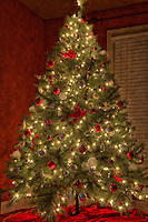 An HDR toned shot of the Christmas Tree in our Master Bedroom