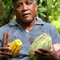 Agricultor con mazorcas de Cacao en el pueblo de Birongo, ubicado entre las poblaciones de Curiepe y Capaya, en la porción centro-norte de Venezuela. Jimmy Villalta