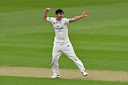 Wicket - Josh Tongue of Worcestershire appeals and celebrates taking the wicket of Hashim Amla of Hampshire during the Specsavers County Champ Div 1 match between Hampshire County Cricket Club and Worcestershire County Cricket Club at the Ageas Bowl, Southampton, United Kingdom on 13 April 2018. Picture by Graham Hunt.