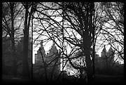 Central Park tetraptych with bare trees and skyline in winter in black and white, New York, NY, March 2014. A tetraptych, also known as a quadriptych, is an artwork that has four panels.