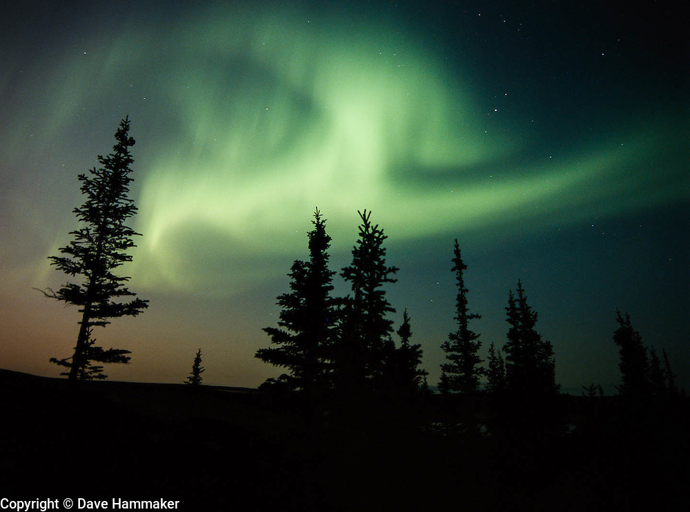 """Northern Lights at South Camp""   Whitefish Lake, Northwest Territories, Canada"