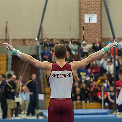 Men's Gymnastics Stanford Open