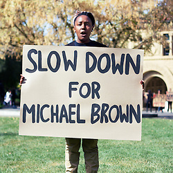 Slow Down for Michael Brown