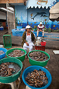 Shrimp and shellfish market, Mazatlan, Sinaloa, Mexico