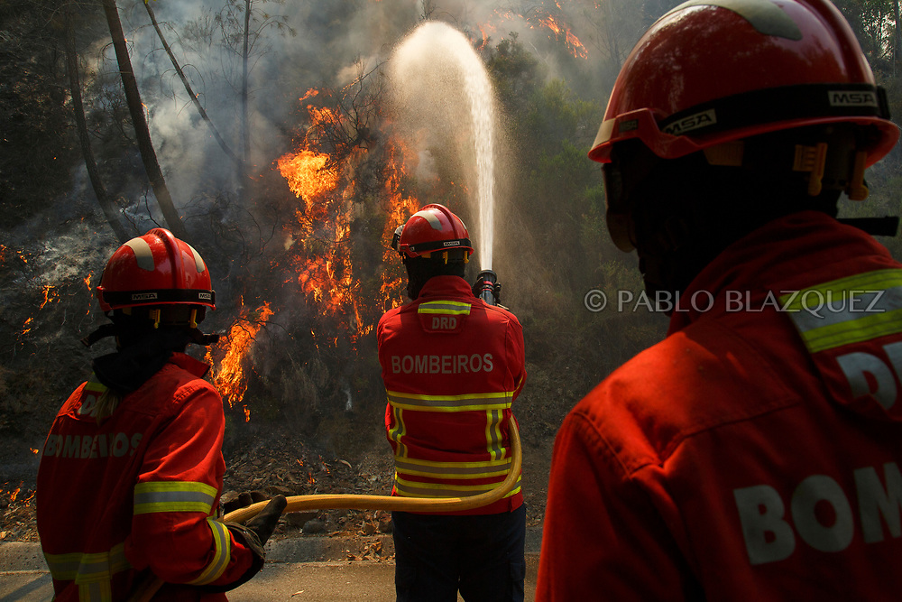 LEIRIA, PORTUGAL - JUNE 18:  Firefighters battle a fire after a wildfire took dozens of lives on June 20, 2017 in Mega Fundeira village, near Picha, in Leiria district, Portugal. On Saturday night, a forest fire became uncontrollable in the Leiria district, killing at least 62 people and leaving many injured. Some of the victims died inside their cars as they tried to flee the area.  (Photo by Pablo Blazquez Dominguez/Getty Images)